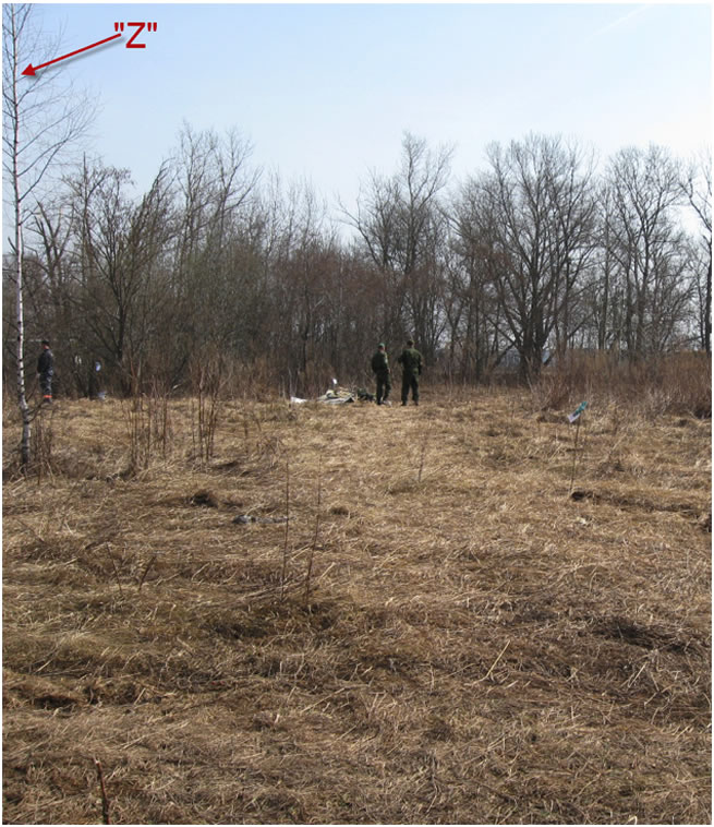 "The tree marked ""Z"" growing in the direct vicinity of the flight path, when the plane is flying from the Kutuzov Street (in the background) to the place of crash. On the right side starting at the blue marker on a stick there is a visible ground trace when hitting the ground with the left stabilizer."