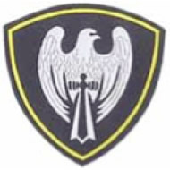 A stylized silver falcon icon, on a black background, is the badge of the 25th Spetsnaz Branch unit of the Russian Ministry of Internal Affairs Troops stationed in Smolensk.